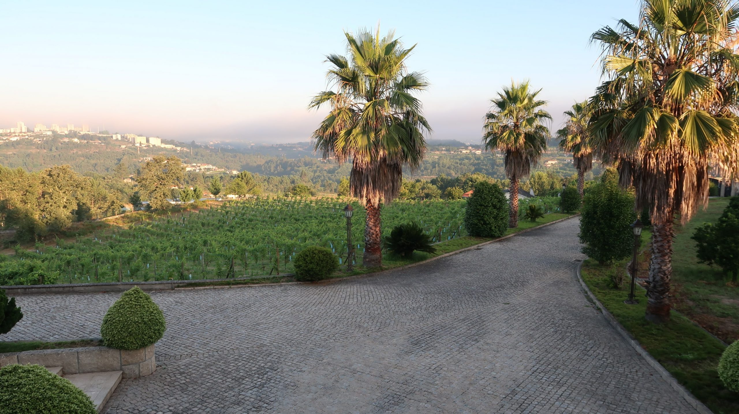 Balcony View - Minho Wine Region - Sapateiro Wines